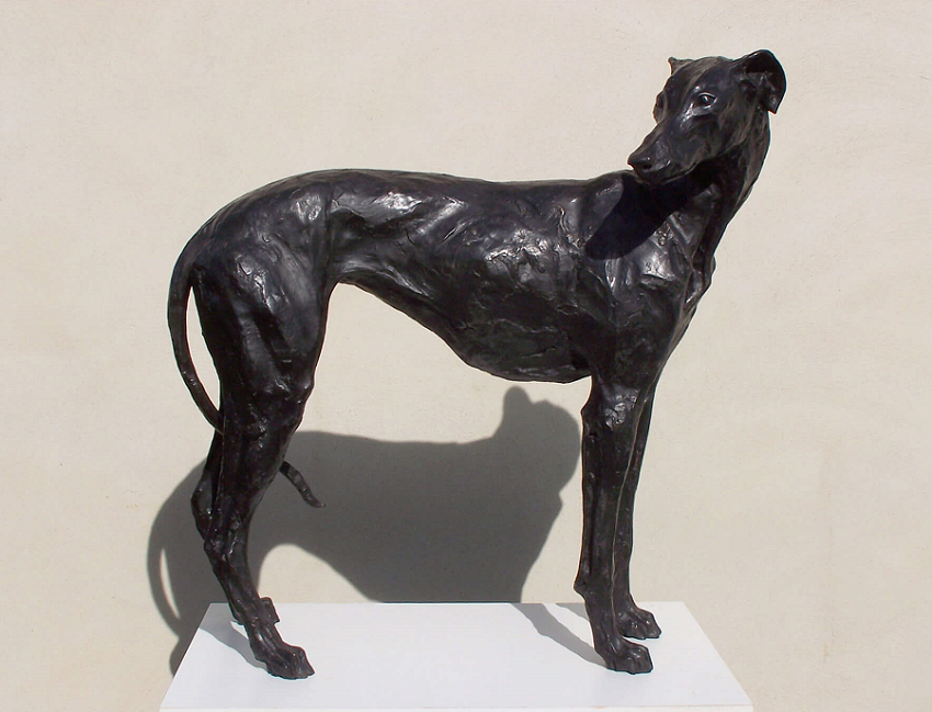 Standing Greyhound 1.png 850 RESIZED 2.