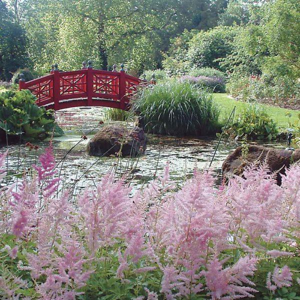 Wilton Ticket Garden Membership image 1000px x 1000px